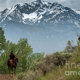 Wildlife Fine Art - Electric Peak Cowboy
