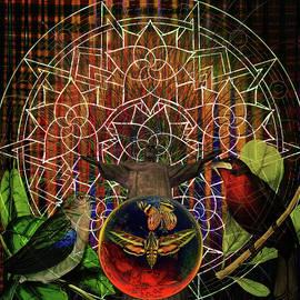 Joseph Mosley - Electromagnetic Solar Rainforest Tribute