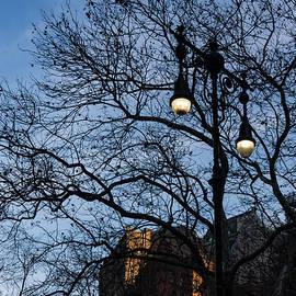 Georgia Mizuleva - Elegant Period Streetlights and Manhattan Skyscrapers Through Naked Tree Branches