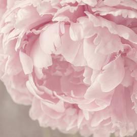 Suzanne Harford - Elegant - Pink Peony
