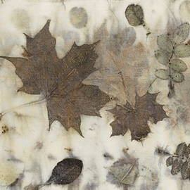 Carolyn Doe - Elements Of Autumn