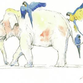 Elephant and parrots - Juan Bosco
