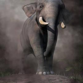 Daniel Eskridge - Elephant