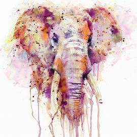 Elephant  - Marian Voicu