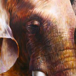 Vali Irina Ciobanu - Elephant empathy