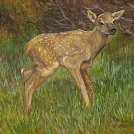 Sharon Karlson - Elk Calf