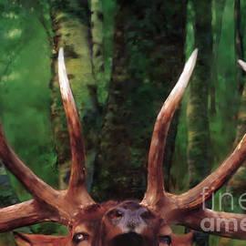 Rob Corsetti - Elk Call