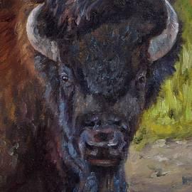 Lori Brackett - Elvis the Bison