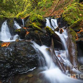 Mike Dawson - Emerald Falls Autumn