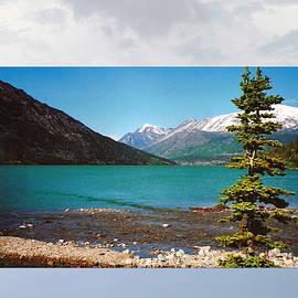 Tina M Wenger - Emerald Lake Chilkoot Trail Alaska