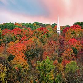 Thomas Schoeller - Enchanted Autumn Hillside - ThomasSchoeller.Photography