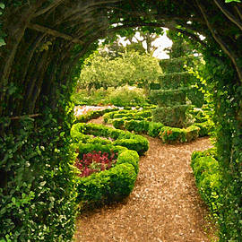 Jean Hall - Enchanted Garden