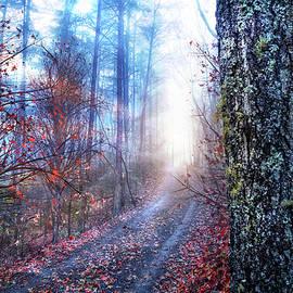 Debra and Dave Vanderlaan - End of Autumn Trail