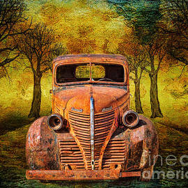 Janice Rae Pariza - End Of The Road For This Plymouth