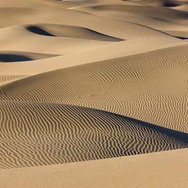 Brenda Tharp - Endless Sand