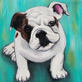Lauren Hammack - English Bulldog Puppy