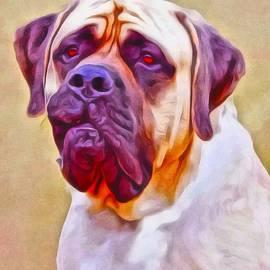 Scott Wallace  - English Mastiff Portrait