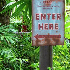 Pamela Williams - Enter here
