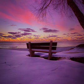 Phil Koch - Enters The Unguarded Heart
