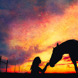 Debi Bishop - Equine Sunset