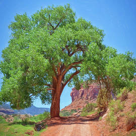 Janice Rae Pariza - Escalante Canyon Archway