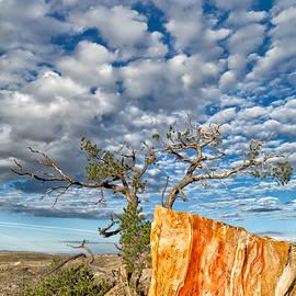 Kathleen Bishop - Escarpment in the Badlands