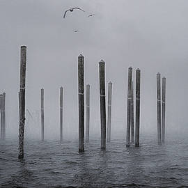 Marty Saccone - Ethereal Pilings