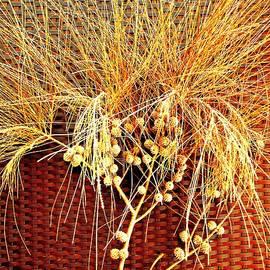 VIVA Anderson - Eucalyptus Red