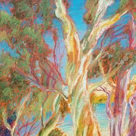 Noemie Sierra - Eucalyptus Trees