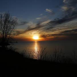 Jeff Roney - Evening Blue