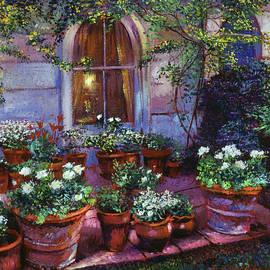 David Lloyd Glover - Evening Garden Patio