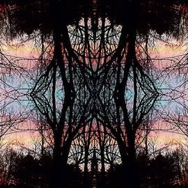 Joy Nichols - Evening Kaleidoscope