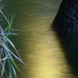 Karen Musick - Evening Reflections