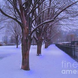 Felipe Adan Lerma - Evening Snow Path at Waterfront Park Burlington Vermont