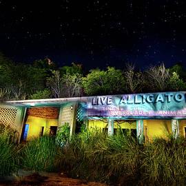 Mark Andrew Thomas - Everglades Gatorland