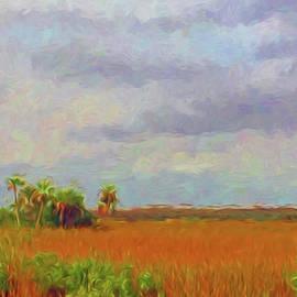 Ginger Wakem - Everglades Sawgrass, Palms and Hammocks