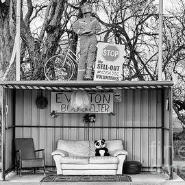 Linda Lees - Everton Bus Shelter