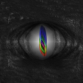 Joe Paradis - Eye of The Beast