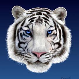 Glenn Holbrook - Eyes of the Tiger