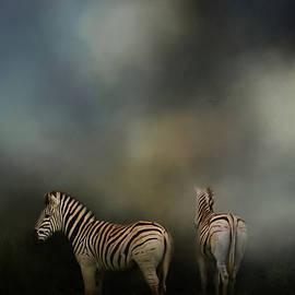 Jai Johnson - Facing Adversity Zebra Art