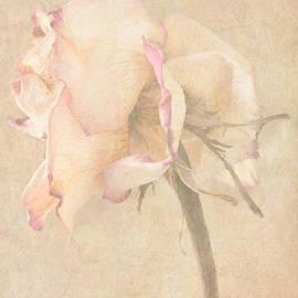 Arlene Carmel - Faded Memories