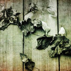 Randi Grace Nilsberg - Faded Memories