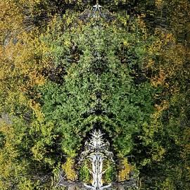 Allan Van Gasbeck - Faeries in the Wood