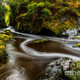 Fairy Glen Autumn - Adrian Evans