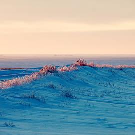 Todd Klassy - Fait a Peindre