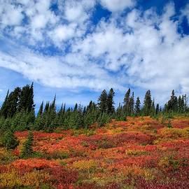 Lynn Hopwood - Fall colors at Mount Rainier