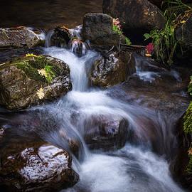 Saija  Lehtonen - Fall Colors Creekside