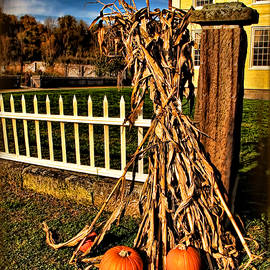 Joan  Minchak - Fall Fence at Hale Farm