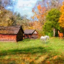 Mary Timman - Fall Horses
