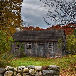 Tricia Marchlik - Fall In New England